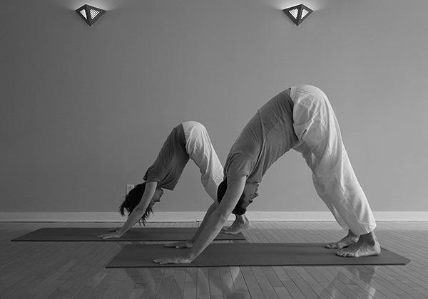 Lợi ích của Sivananda Yoga