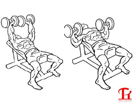 Hướng dẫn các bài tập cơ ngực cho nam tại nhà hiệu quả nhất !