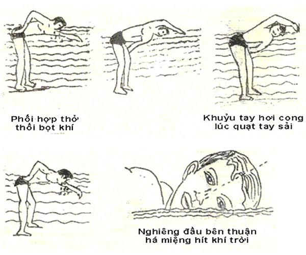 Tập sải tay dưới nước kết hợp thở