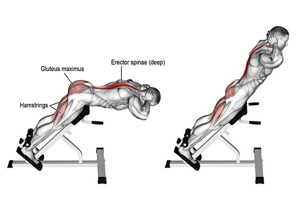 Hyperextension - bài tập cơ lưng dưới hiệu quả nhất cho Gymer