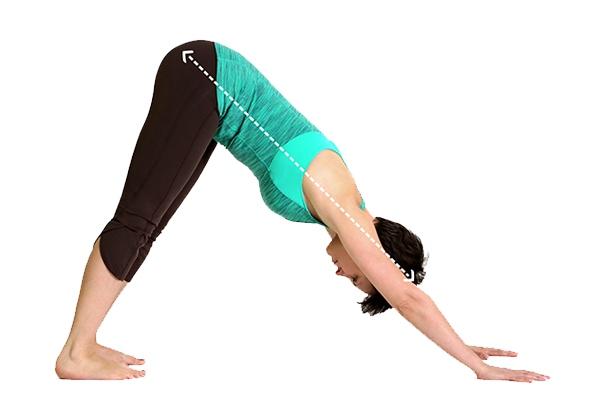 Bài tập Yoga chữa bệnh đau lưng
