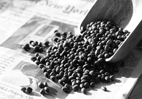 Cách chọn hạt đậu