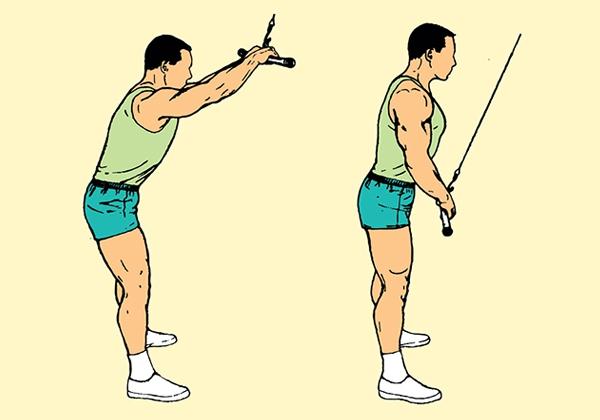 Cách tập Straight Arm Pulldown