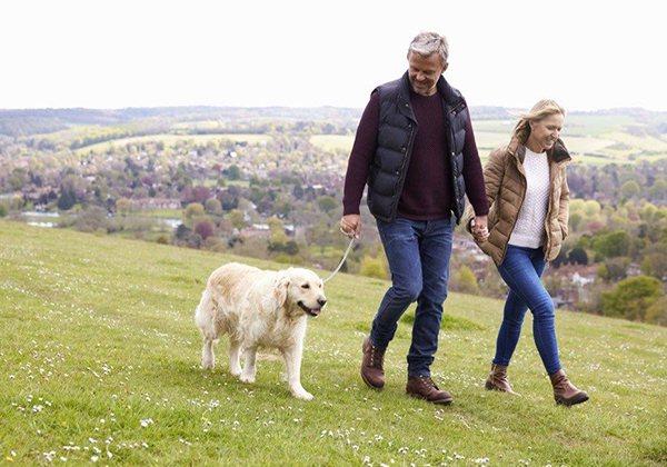 Đi bộ giúp ổn định huyết áp