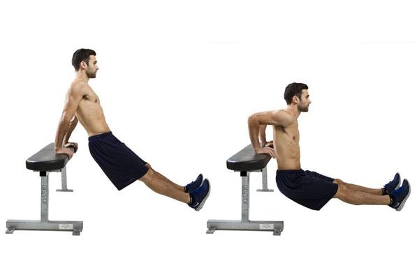 Tập cardio Triceps Dips
