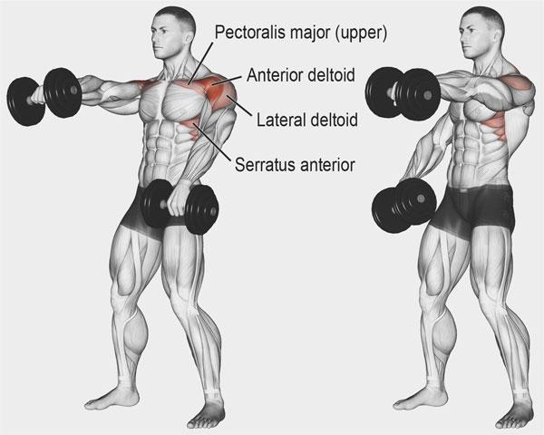 Bài tập Gym giảm cân Alternating Front Dumbbell Raise