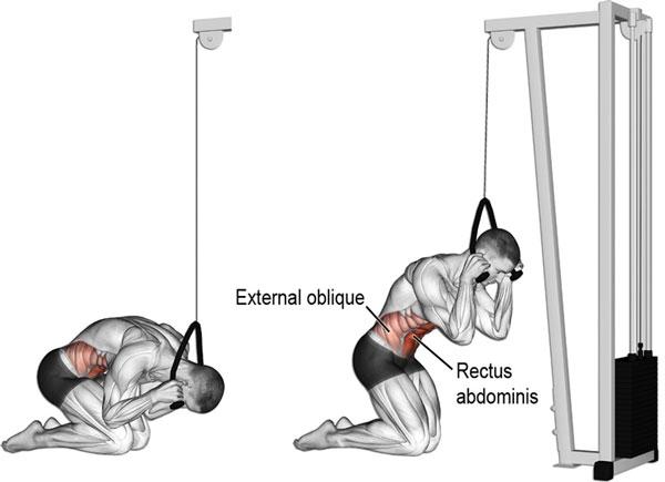 Bài tập Gym giảm cânKneeling Cable Crunch