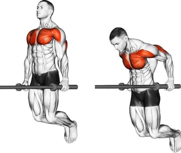 Paraller Bar Dip là bài tập với xà kép giúp phát triển cơ bắp tay sau rất hiệu quả