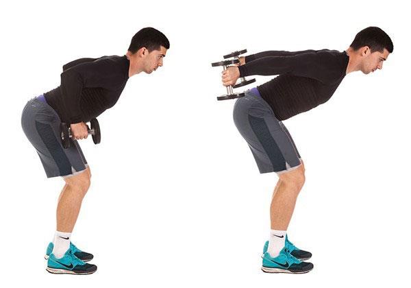 Bài tập Standing Bent-Over Two-Arm Dumbbell khá dễ tập luyện