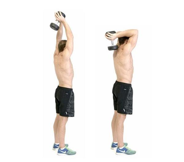 Standing Dumbbell Tricep giúp tăng cường cơ bắp tay cực tốt