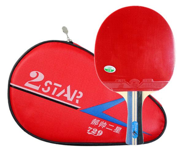 Bộ vợt bóng bàn 729 2Star