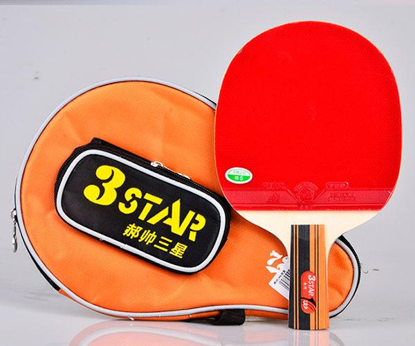 Bộ vợt bóng bàn 729 3Star