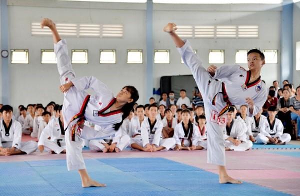 Môn võ Taekwondo