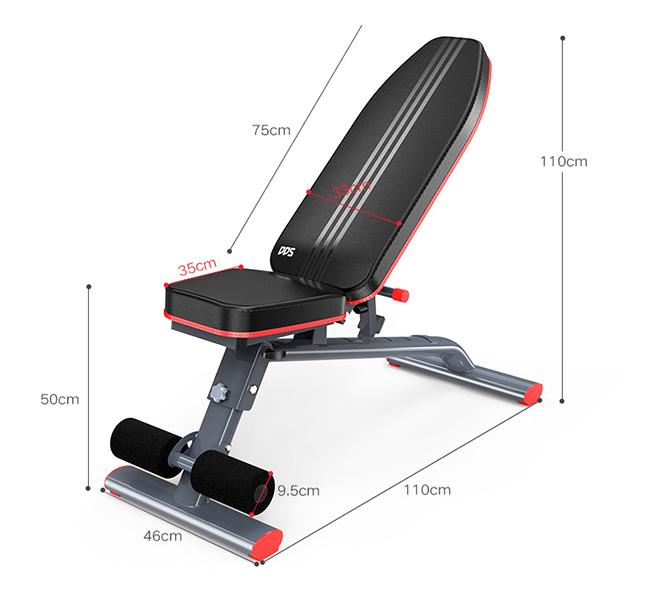 Kích thước ghế tập Gym DDS-1201