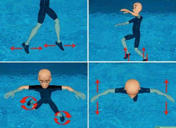Kỹ thuật chân khi bơi đứng nước