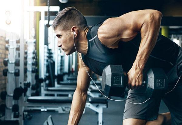 Lịch tập Gym cho người mới bắt đầu