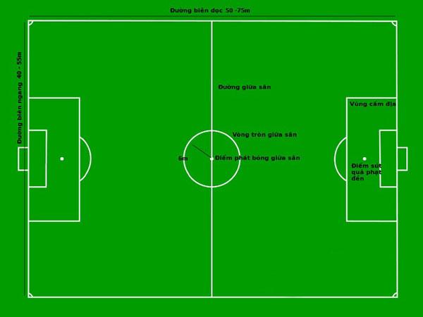 Luật thi đấu bóng đá 7 người quy định về kích thước sân bóng rất cụ thể
