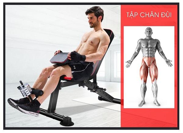 Tập chân đùi với ghế tập Gym KK022D