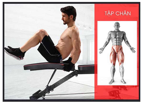 Tập chân với ghế tập Gym KK022D