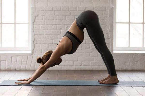 Tập Yoga tại nhà với tư thế chó úp mặt