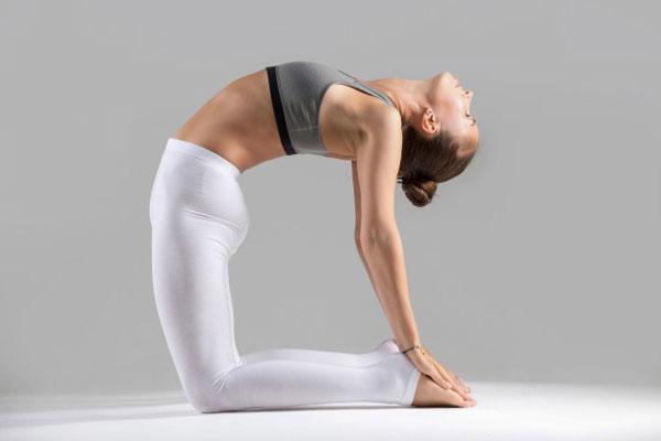 Tập Yoga tại nhà với tư thế con lạc đà
