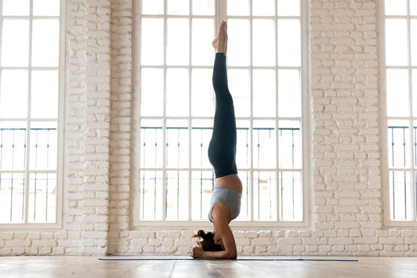 Bài tập Yoga Adho Mukha Vrkasana