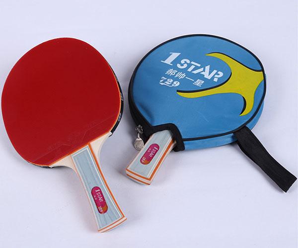 Túi vợt bóng bàn 729 1Star