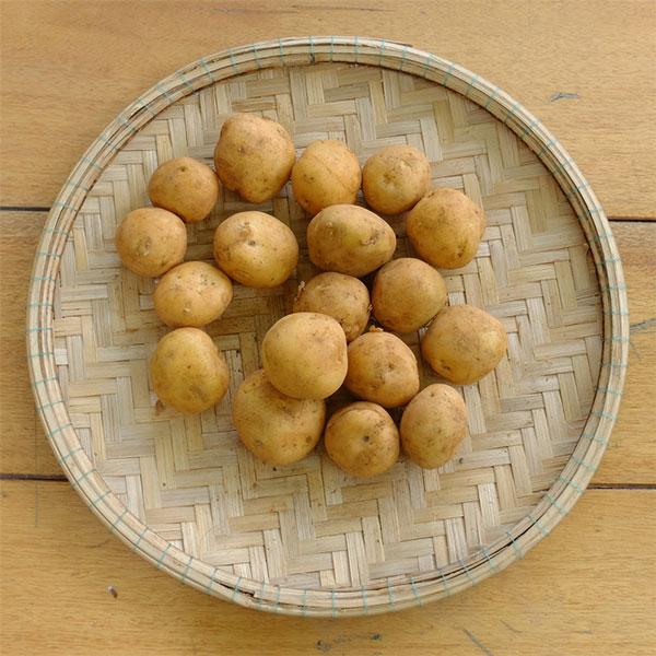 Khoai Tây là 1 trong các loại thực phẩm chứa nhiều Kẽm