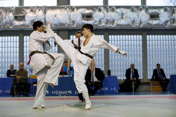 Các lưu phái môn võ Karate