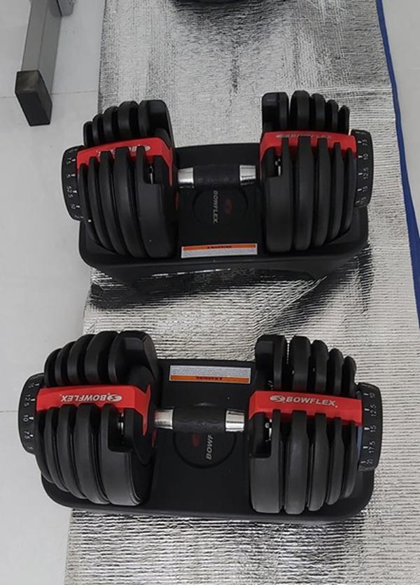Tạ tay Bowflex 552