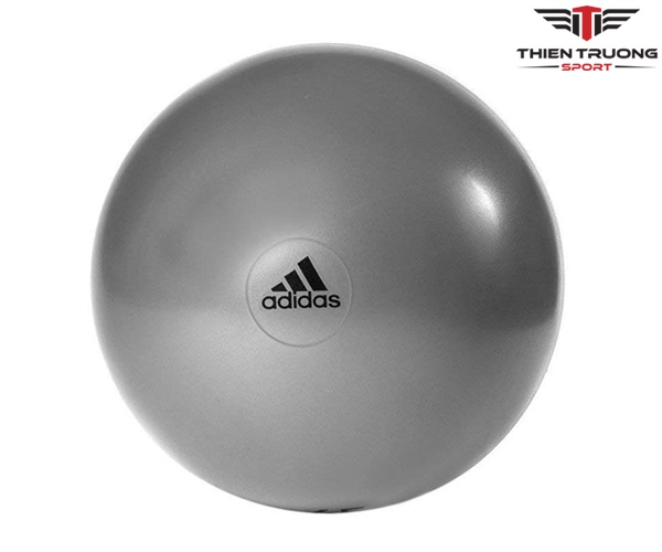 Bóng thể dục Adidas ADBL-11245GR loại 55cm và giá rẻ Nhất