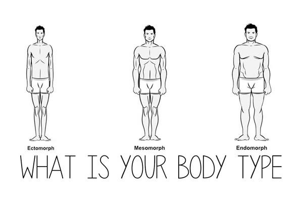 Các tạng người trong thể hình và cách tập cho từng tạng người
