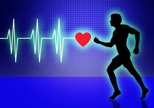 Cardio tốt cho tim mạch