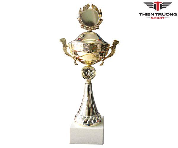 Cúp thể thao 8V0184 thiết kế đẹp mắt giá rẻ nhất tại Việt Nam