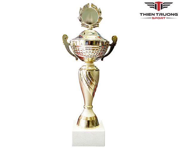 Cúp thể thao 8V0185 mẫu mới và giá rẻ tại Thiên Trường Sport