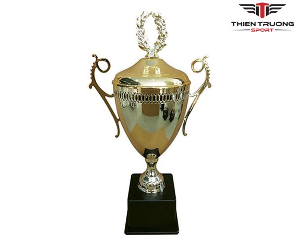 Cúp thể thao 9V1117 cực đẹp giá rẻ nhất tại Thiên Trường Sport