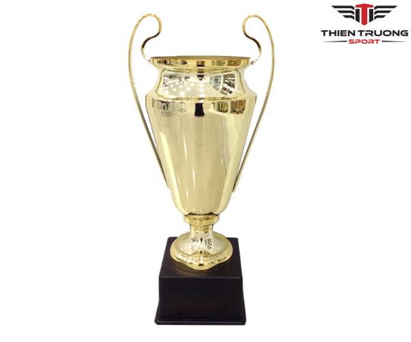 Cúp thể thao 9V1125 cỡ lớn giá rẻ nhất tại Thiên Trường Sport