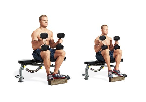 Các bài tập bắp chân và bắp chuối hiệu quả tốt nhất cho Gymer