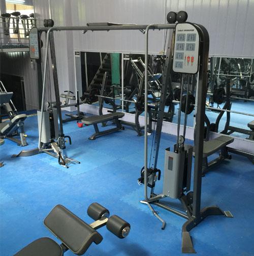 Giàn xô bay phòng tập DH Gym