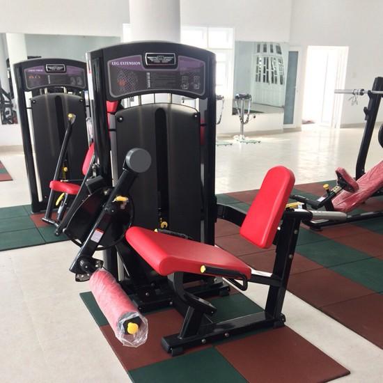 Lắp đặt phòng tập Gym tại Vũng Tàu 3