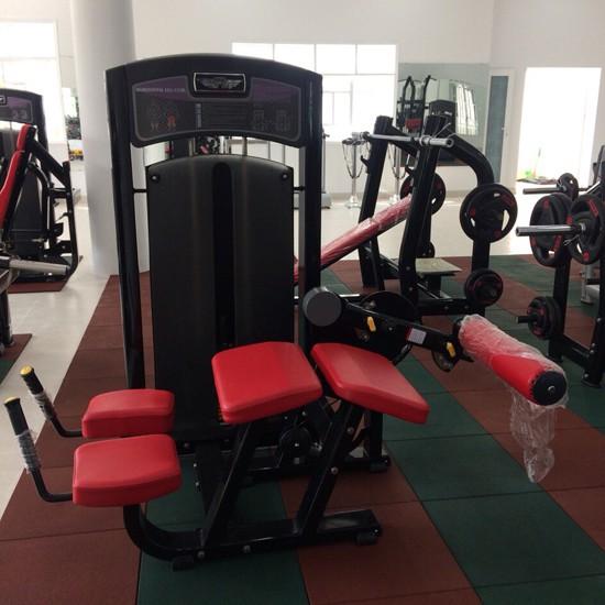 Lắp đặt phòng tập Gym tại Vũng Tàu 4