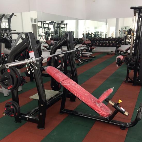 Lắp đặt phòng tập Gym tại Vũng Tàu 8