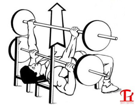 Hướng dẫn nằm đẩy tạ đòn trên ghế phẳng chuẩn cho Gymer !