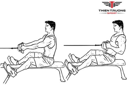 Ngồi kéo cáp tập cơ lưng