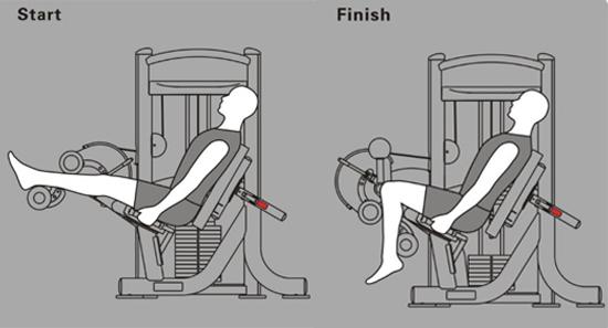 Sử dụng máy tập cơ đùi sau Impulse IT9307
