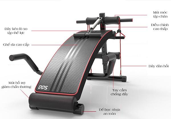 Thiết kế ghế tập bụng DDS-104