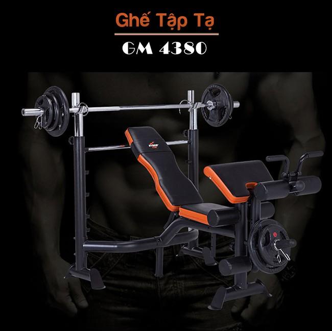 Thiết kế ghế tập tạ GM 4380