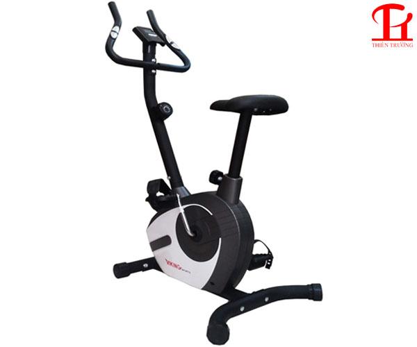 Xe đạp tập thể dục Viking VK-02 giá rẻ tại Thiên Trường Sport