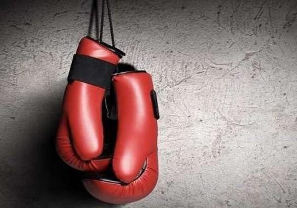 Bảo quản găng tay Boxing