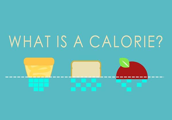 Lượng calo cần thiết trong 1 ngày bao nhiêu để không tăng cân?